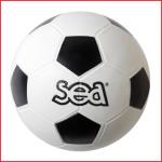 duurzame voetbal initiatie voor op speelplaatsen